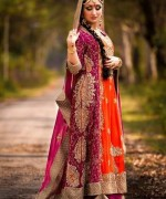 Barat Dresses 2014 For Girls004