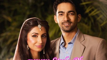 Hira tareen and Ali Safina Wedding Picture