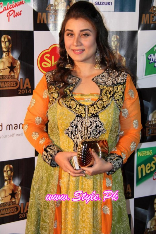 4th pakistani media award pic 13
