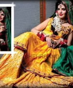 Bridal Dresses 2014 by Shehrbano for Women003