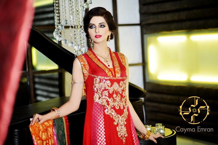 Formal Wear Dresses 2014 by Cayma Emran