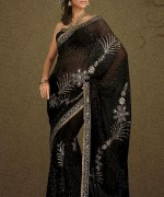 Latest Designs Of Indian Bridal Sarees 2014 For Women 0010