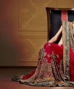 Latest Designs Of Indian Bridal Sarees 2014 For Women 0011