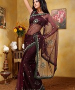 Latest Designs Of Indian Bridal Sarees 2014 For Women 0012