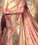 Latest Designs Of Indian Bridal Sarees 2014 For Women 0014