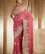 Latest Designs Of Indian Bridal Sarees 2014 For Women 0015