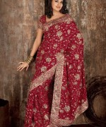 Latest Designs Of Indian Bridal Sarees 2014 For Women 005