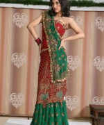 Latest Designs Of Indian Bridal Sarees 2014 For Women 006