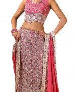 Latest Designs Of Indian Bridal Sarees 2014 For Women 009