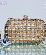 Latest Fashion of Clutches for Girls 2014004