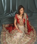 Lehenga Choli Dresses 2014 For Women 001