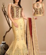 Lehenga Choli Dresses 2014 For Women 0011