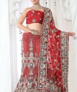 Lehenga Choli Dresses 2014 For Women 0016