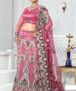 Lehenga Choli Dresses 2014 For Women 0017