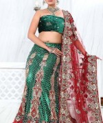 Lehenga Choli Dresses 2014 For Women 0018