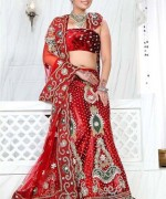 Lehenga Choli Dresses 2014 For Women 0019