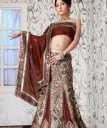 Lehenga Choli Dresses 2014 For Women 002