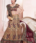 Lehenga Choli Dresses 2014 For Women 003