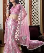 Lehenga Choli Dresses 2014 For Women 005