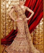 Lehenga Choli Dresses 2014 For Women 008
