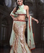 Lehenga Choli Dresses 2014 For Women 009