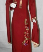 Pakistani Long Sleeve Dresses 2014 For Women 001