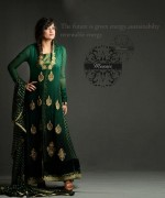 Pakistani Long Sleeve Dresses 2014 For Women
