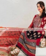 Suman Ayesha Winter Dresses 2014 For Women 008