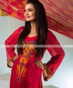 Suman Ayesha Winter Dresses 2014 For Women003