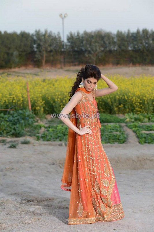 Mehryn Zafar Formal Wear Dresses 2014 For Girls 2