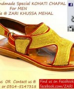 Zari Khussa Mahal Spring Shoes 2014 For Men And Women  001