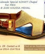 Zari Khussa Mahal Spring Shoes 2014 For Men And Women 005