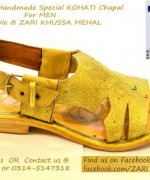 Zari Khussa Mahal Spring Shoes 2014 For Men And Women 008