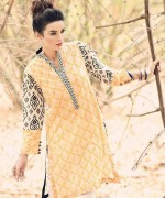 Cynosure Summer Dresses 2014 for Women004