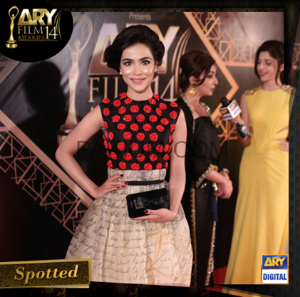 ARY Film Awards Red Carpet Pictures. pic 12