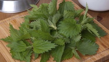Benefits Of Nettle Leaf For Skin, Hair And Health Care