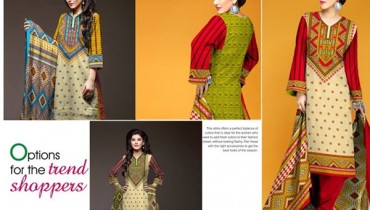 Ajwa Textile Khaddar Dresses 2014 Volume 1 For Women 005