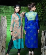 Damak Autumn Winter Dresses 2014 For Girls 5