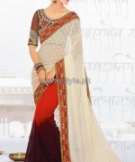 Latest Indian Sarees Designs 2014 For Women 6