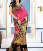 Latest Indian Sarees Designs 2014 For Women 9