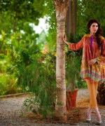 Evolution Textiles Autumn Dresses 2014 For Women 001