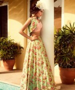 Zara Shahjahan Formal Dresses 2014 For Women 003