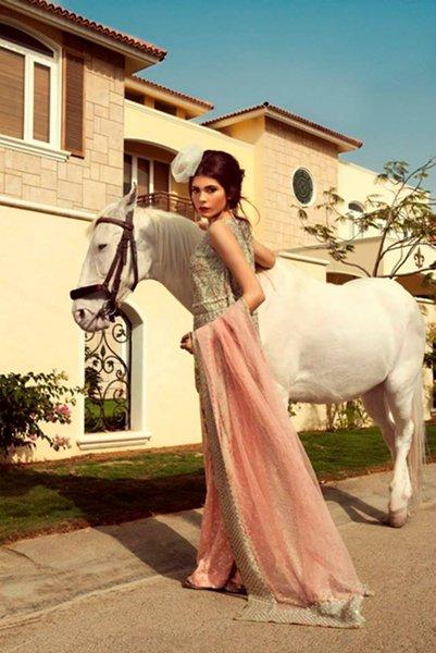 Zara Shahjahan Formal Dresses 2014 For Women 006