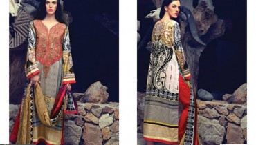 Firdous Cloth Mills Winter Dresses 2014 For Women 005