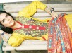 Maheen hussain Winter Dresses 2014 by Shariq Textiles 005
