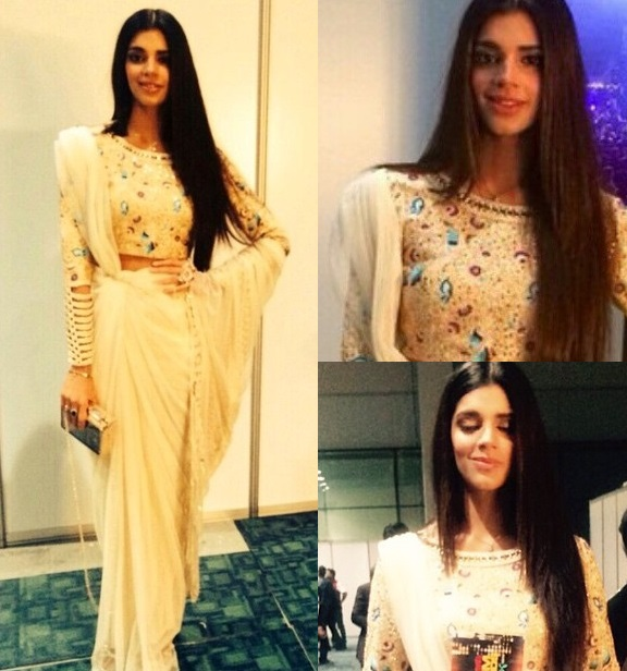 sanam saeed dress at 3rd hum awards