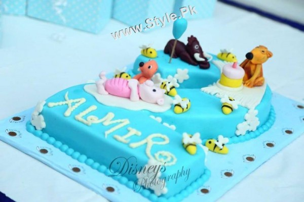 Birthday Celebrations of Fatima Effendi and Kanwar Arsalan's son (5)