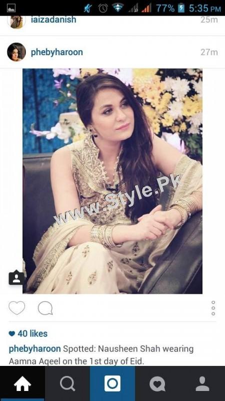 Pakistani Celebrities on Eid ul Adha 2015 (8)