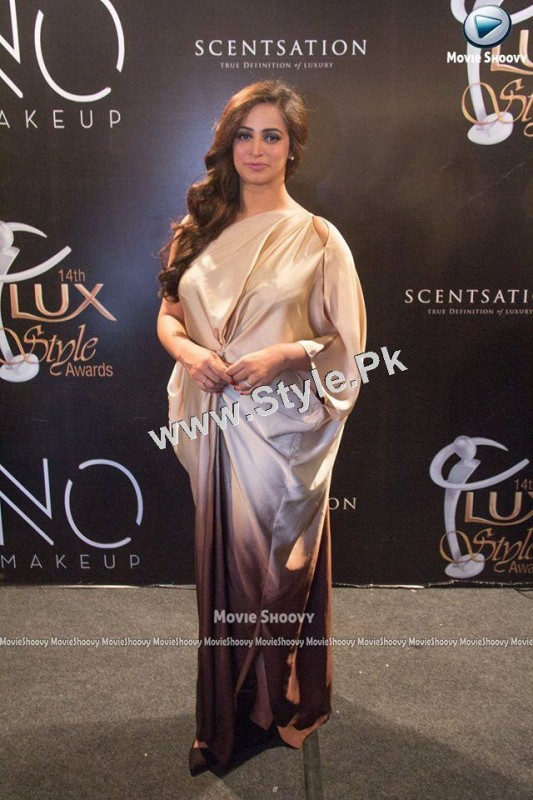 Celebrities who looked best at Lux Style Award 2015  (6)