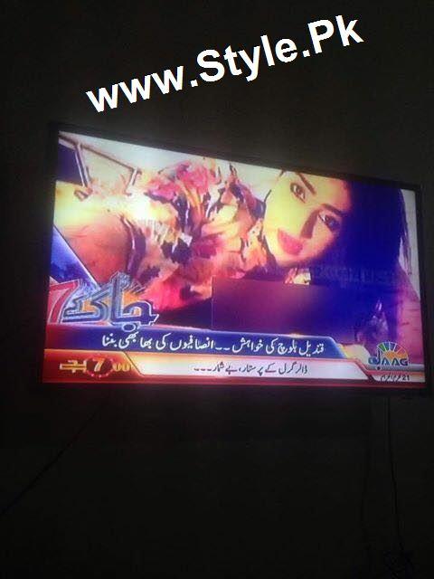 Supermodel Qandeel Baloch Proposed Imran Khan (3)